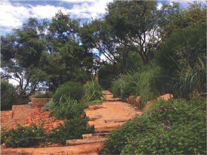 Landscaping_Centurion_ Gauteng10