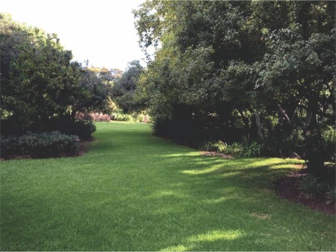Landscaping_Centurion_ Gauteng2