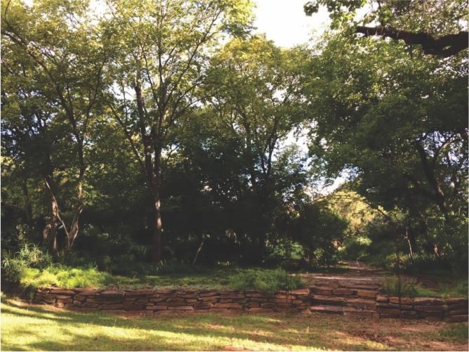 Landscaping_Centurion_ Gauteng3