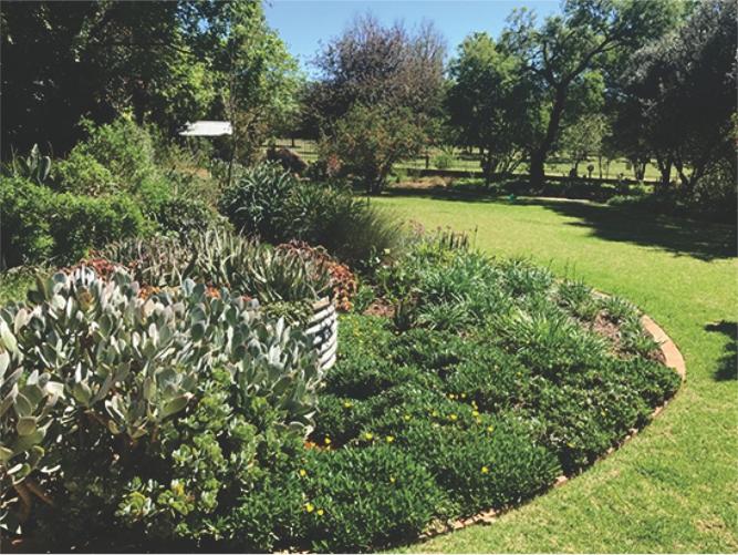Landscaping_Centurion_ Gauteng5
