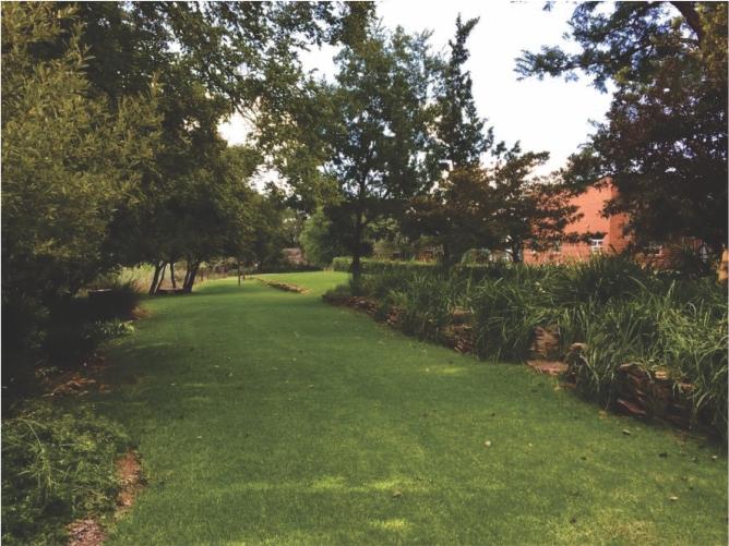 Landscaping_Centurion_ Gauteng6