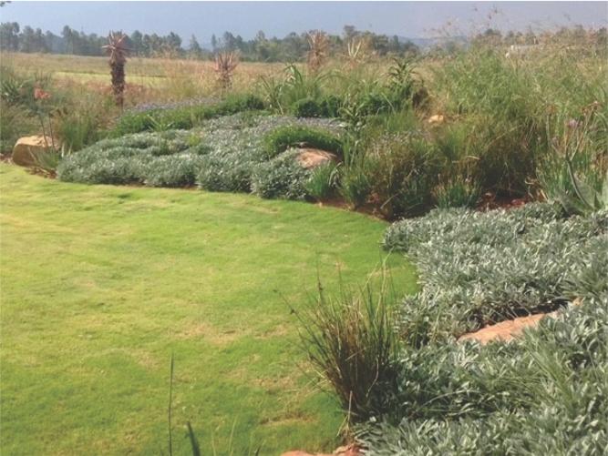 Landscaping_Centurion_ Gauteng7